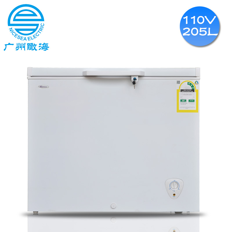 110V外贸冰柜205L出口沙特冷藏柜
