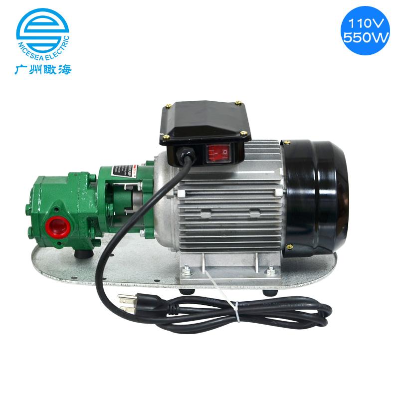 110V定制手提式齿轮泵