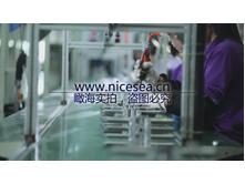 水瓶生产线6
